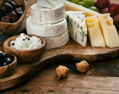 Handmade cheese festival